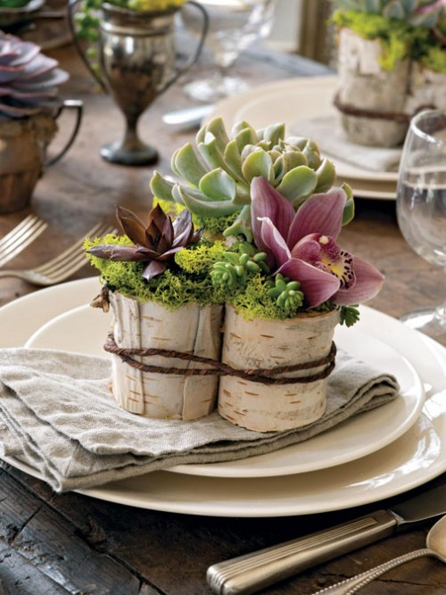 tree-stump-vases-0022-500x667